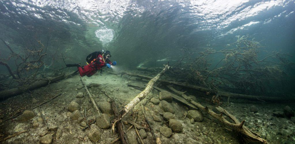 Järven pohjaan kaatuneet puut muodostavat kaloille suojapaikkoja. Kuva: Pekka Tuuri.