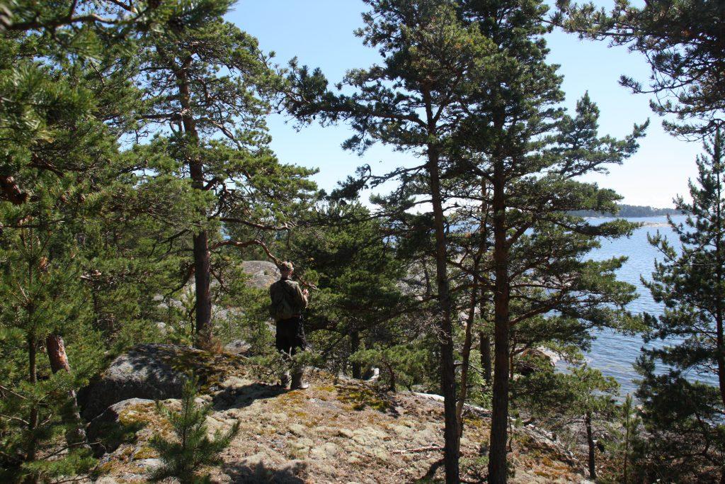 Metsäasiantuntija Itä-Uudenmaan saaristossa. Kuva: Tuuli Hakulinen