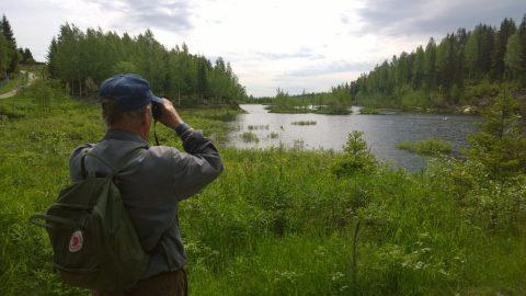 Kiikarointia Pikkukilin ötökkäretkellä. Kuva Ahti Keränen.