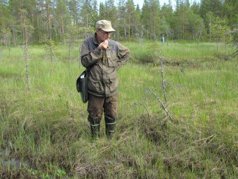 Suotutkija Jarmo Laitinen