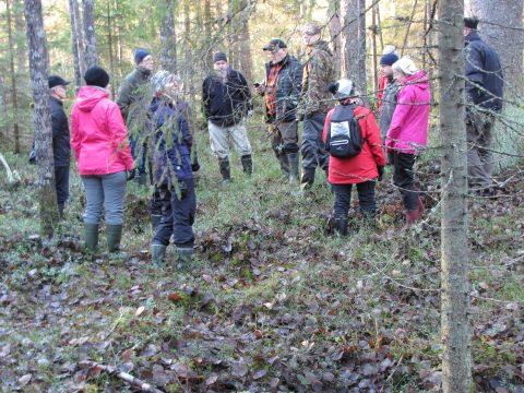 metsäretkeläisiä vanhassa metsässä