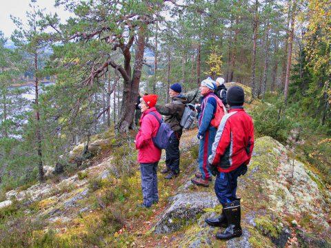 kuva Heikki Rissanen