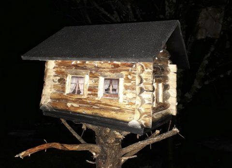 lintulauta
